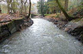 Ruisseau de Grée au lieu-dit « Les Rigaudières » à Mésanger